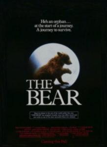 Niedźwiadek Film