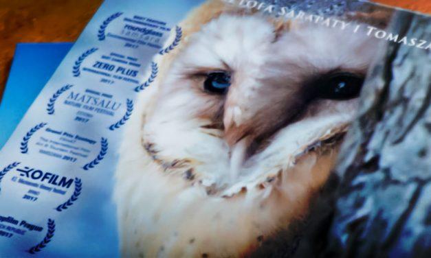 ZNURTEM ŻYCIA – KRÓTKA RECENZJA FILMU