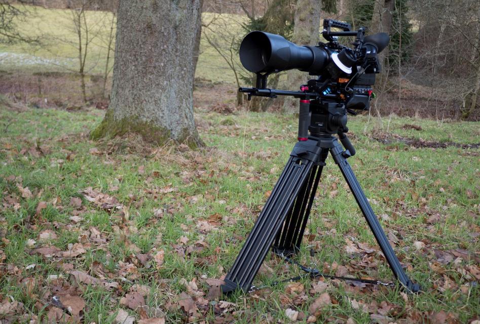Kamera dofilmowania przyrody
