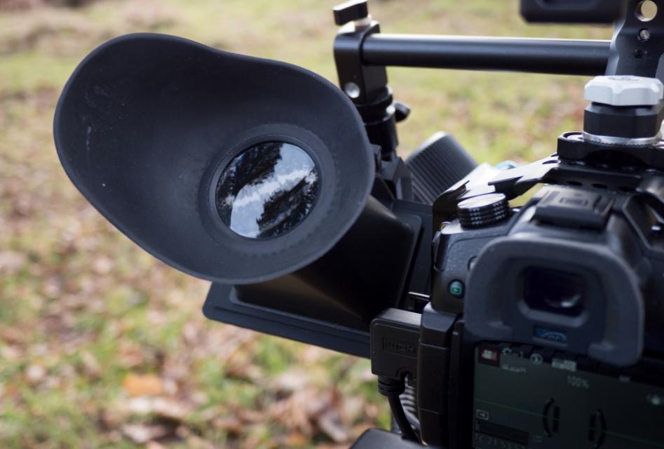 Lupa domonitora
