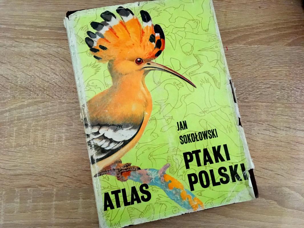 Atlas Ptaki Polski Jan Sokołowski okładka