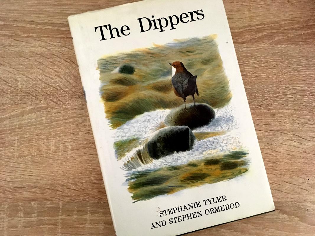 The Dippers Okładka